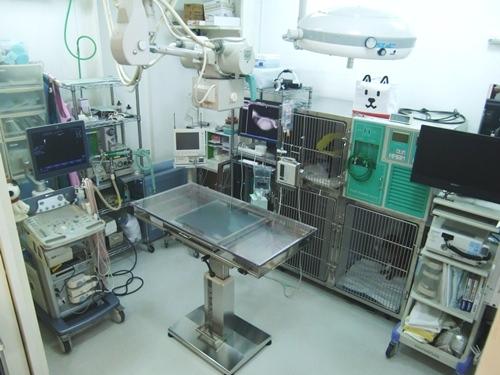 ふじい動物診療所4手術室